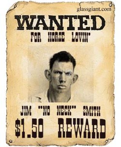A Wanted Poster  Criminal Wanted Poster